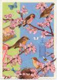 TAUSENDSCHÖN Vögel mit Kirschblüten Postkarte
