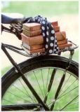 RANNENBERG Fahrrad mit Büchern Postkarte