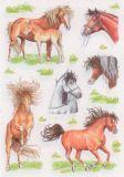Herma Gezeichnete Pferde Sticker